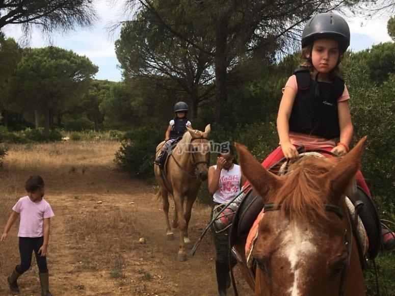 Ruta a caballo apta para todos en Conil