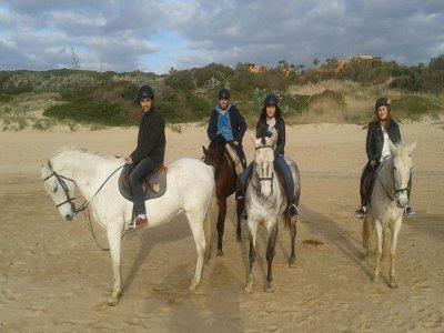 在Costa Gaditana骑马游览3小时