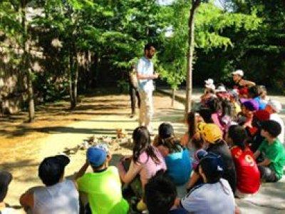 Urban camp Pinto, 2 weeks