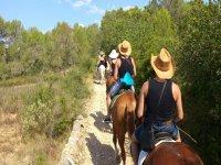 Ruta a caballo pura raza español, Valles de Randa