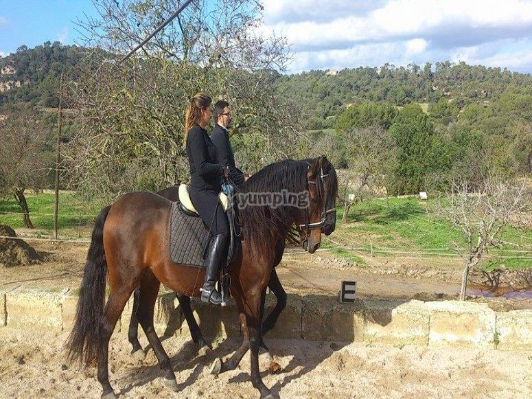 Excursion a caballo
