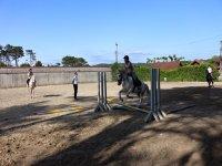 Salto de valla con el caballo