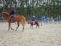 En pony
