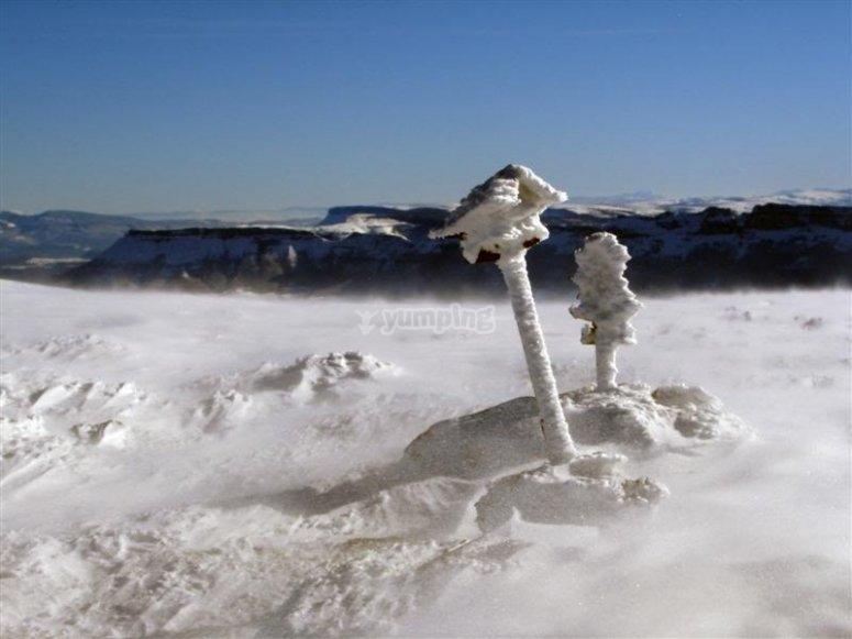 Buzon nieve