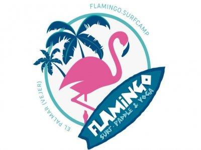 Flamingo Surf