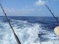 Pescando en barco