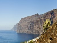 Paseando por la costa de Tenerife