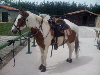 Ruta a caballo en las Merindades, 7 horas