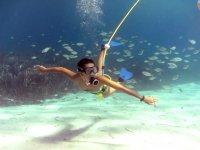 Buceo en Mallorca con el Sistema Peter Diving