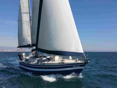 体育帆船赛在阿利坎特湾和开胃菜