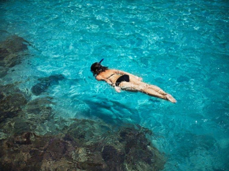 在清澈的水中浮潜