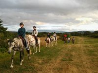 Riding a horse through the natural environment