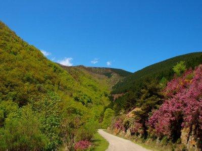4x4 Route in La Sierra de la Demanda