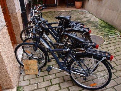 Vía verde del Oja en bicicleta media jornada