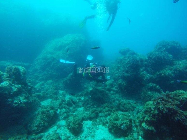 Wonderful snorkeling experience