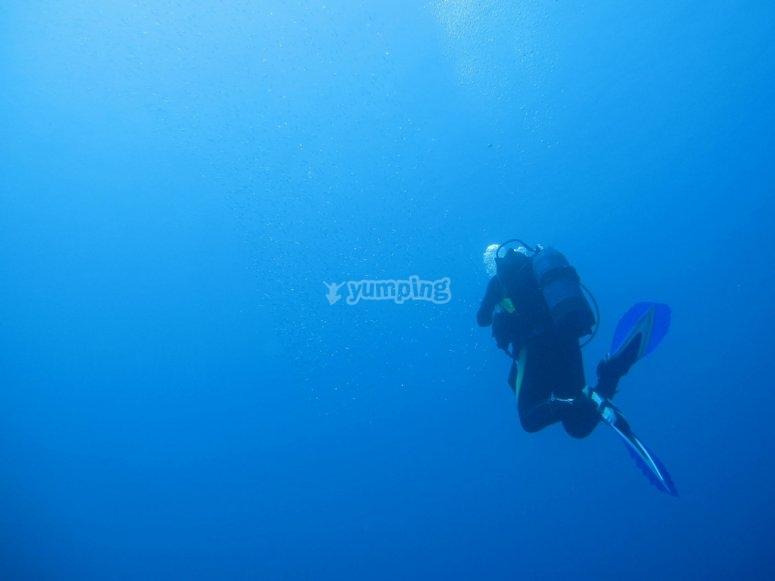 Buceando en la inmensidad del mar