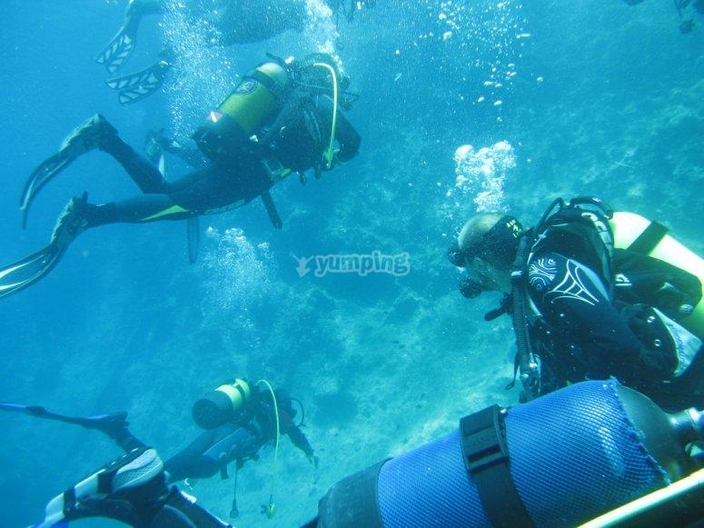 Descubriendo el fondo marino de Almeria