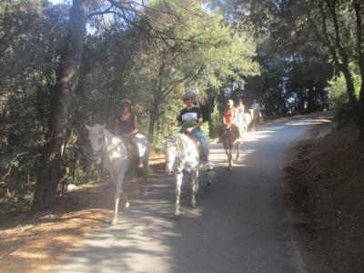 骑马Cánovas与迷你课和食物
