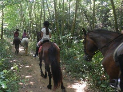 Centre Equestre Malavella