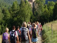 Niños realizando senderismo