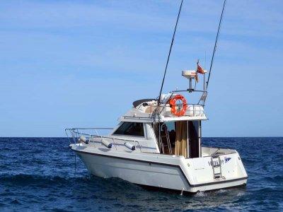 在布拉瓦海岸(Costa Brava)租一条船8小时
