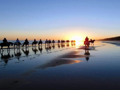 Horse Route w. Sunset, Doñana´s Beach