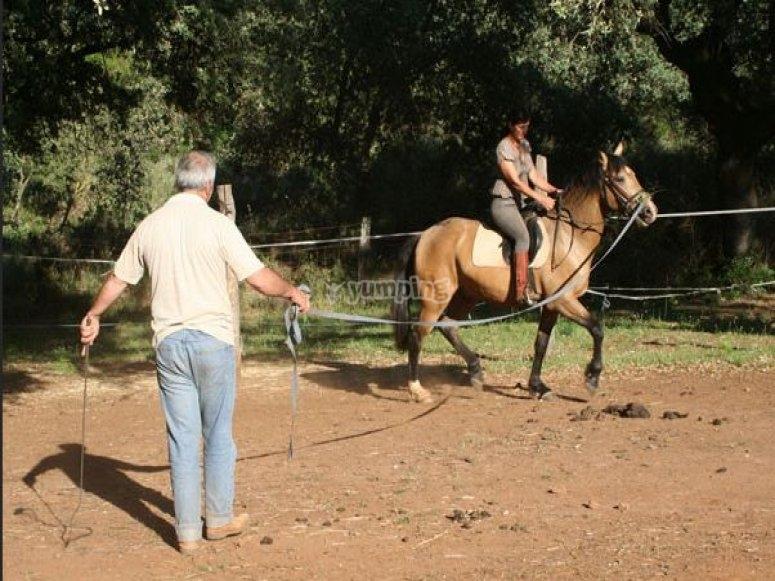 Doma natural caballo