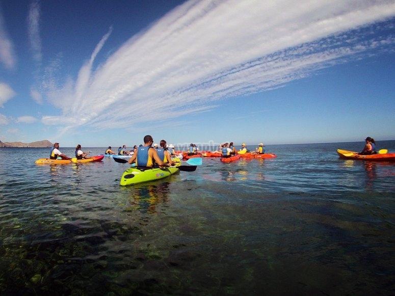 Kayaks navegando