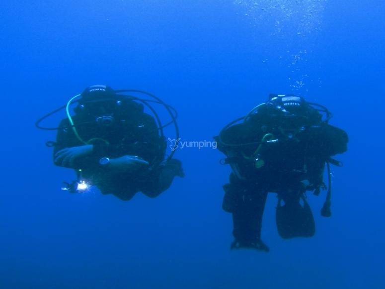 Participants while diving