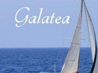 Galatea Sailing Avistamiento de Cetáceos