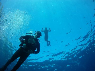 10 Inmersiones de buceo en Benidorm con equipo