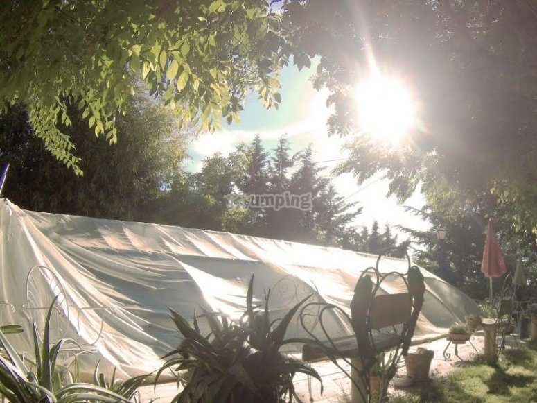 Jardines bajo el arbol