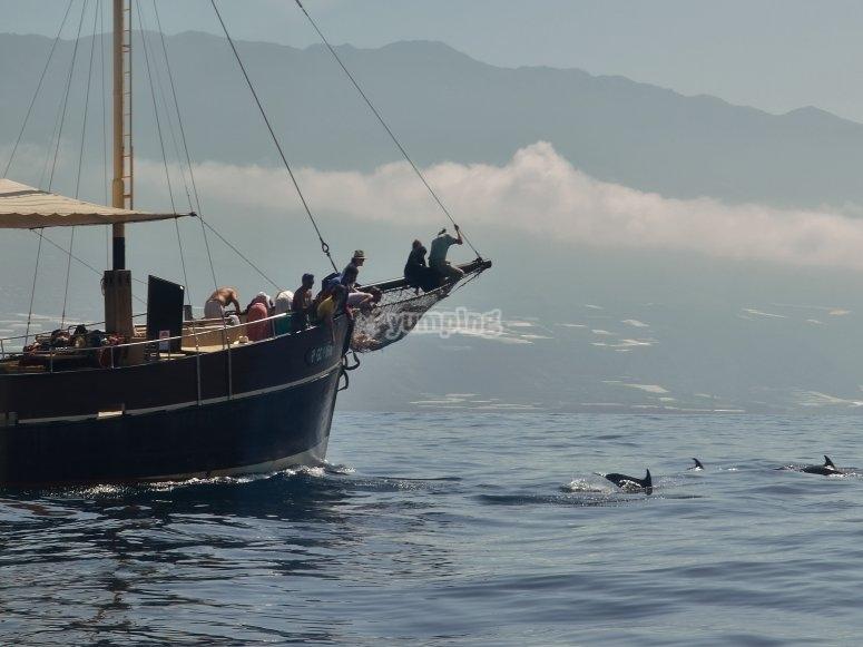 在我们的帆船中航行