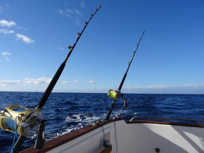 Fishing On a Boat in La Palma, 3-Hours
