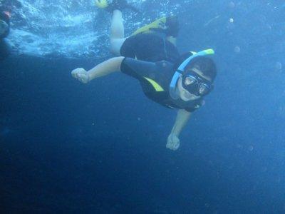 贝尼多姆自然公园的浮潜游览