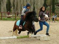 Boys on pony