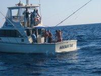 Bien equipados para la pesca