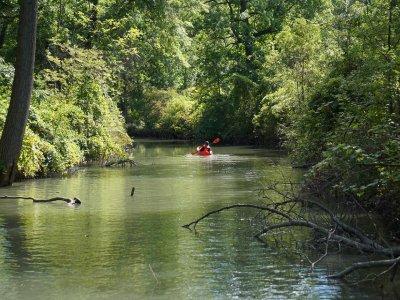 划独木舟在瓜迪拉河上骑行2-3个小时