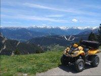 在比利牛斯山脉前的四轮车