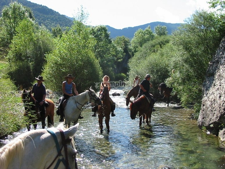 Strolling by horse through the river