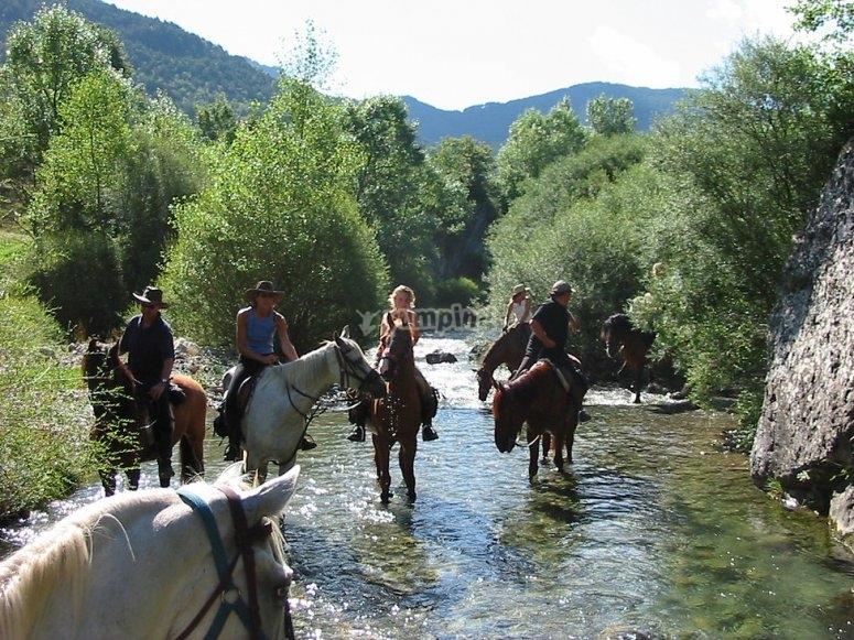 与马沿河漫步