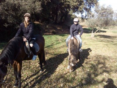 VIP Horseback Trip, Monsteny, 2 Hours