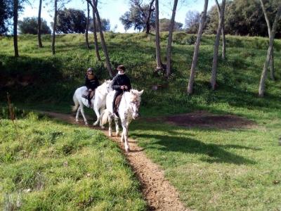Ruta a caballo privada por el Montseny 2 horas