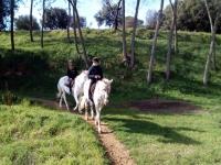 通往马的私人路线(VIP)蒙特塞尼2小时