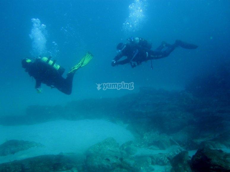 在海中潜水的两名潜水员