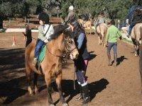 Paseo en Poni para Niños Huelva 30 minutos