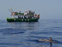 Boat trip across the waters of the Canary islands