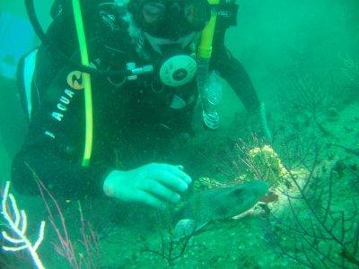 Diving trip in Santiago de Compostela