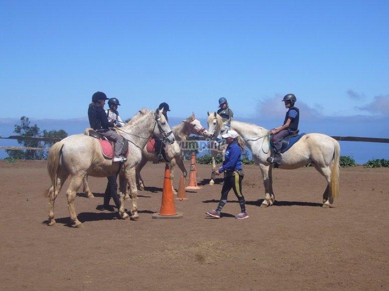 Sesion de equitacion