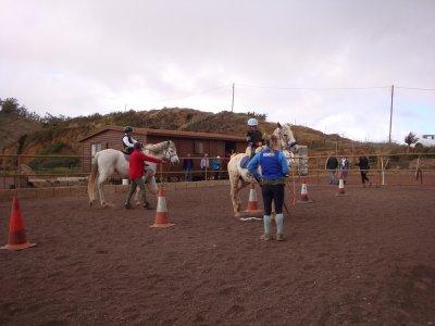 Ruta a caballo en La Laguna, Tenerife, 1 hora